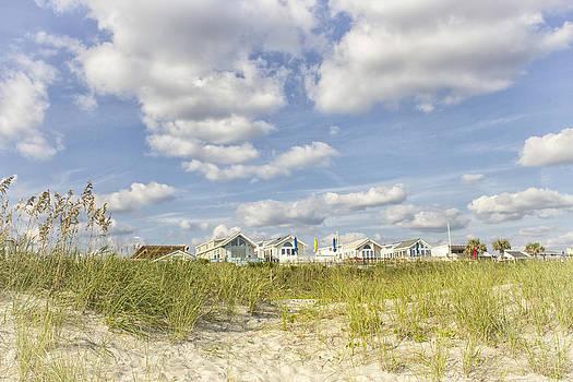 Beach Living by Ben Shields