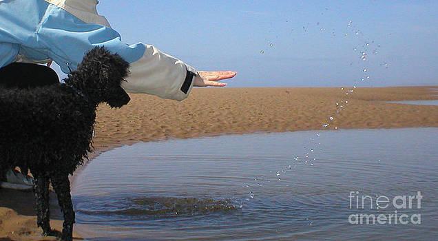 Malcolm Suttle - Beach Magic