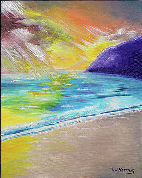Beach Reflection by Thomas J Herring