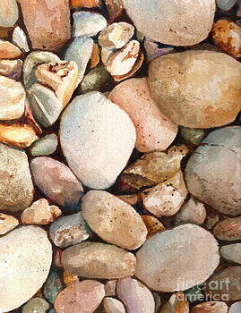 Beach Rocks by Andrea Timm