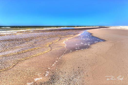 Beach Sand by William Reek