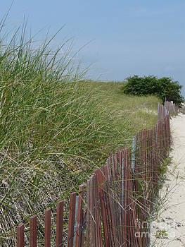 Beach Scene by Glass Slipper