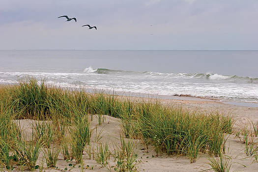Terry Shoemaker - Beach Scene in SC