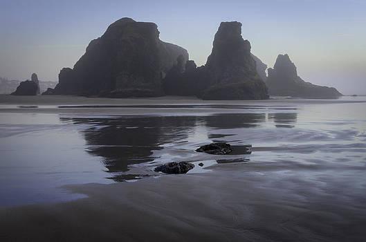 Beach Sentinels  by Chris Malone