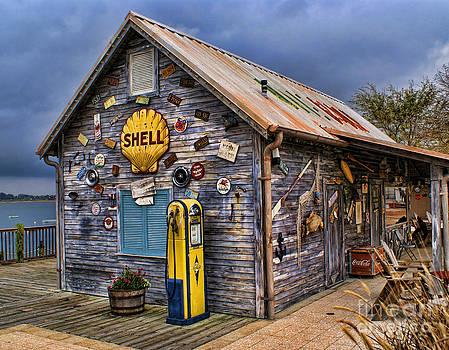 Beach Shell by Julia Dressler