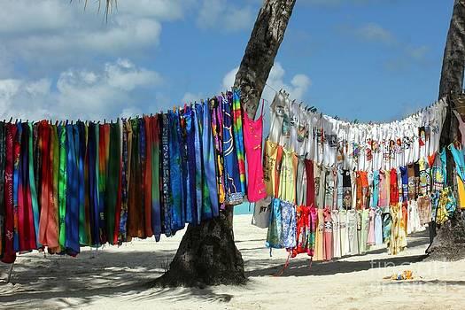 Sophie Vigneault - Beach Shop