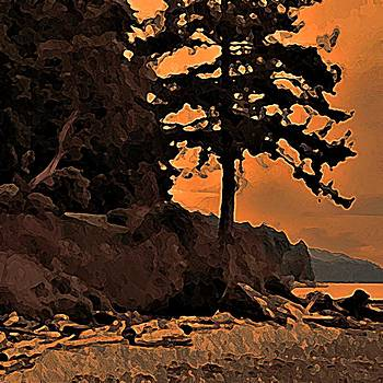 Beach Silhouette by Stanley  Funk