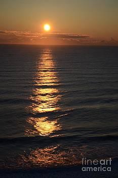 Beach Sunrise by Wayne Pellenberg