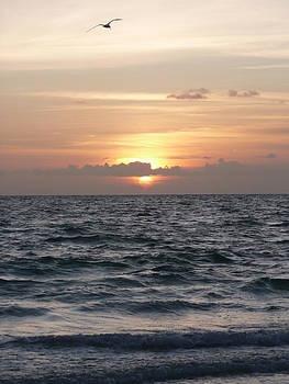 Beach Sunset by Barb Montanye Meseroll