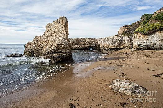 Beach by Tim Tolok