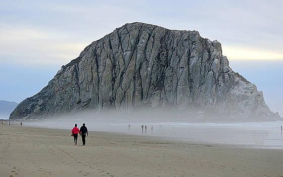 Beach Walk by AJ  Schibig
