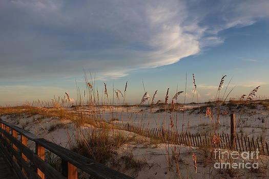 Beach Walk by Light Rapture