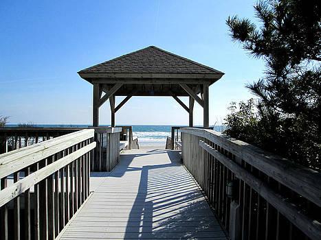 Silvie Kendall - Beach Walk