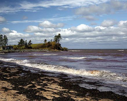 Beach Waves by Allan MacDonald