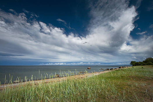 Beach with dramatic sky by Anna Grigorjeva