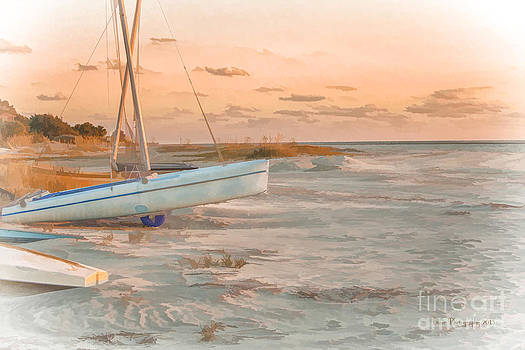 Beached by Linda Blair