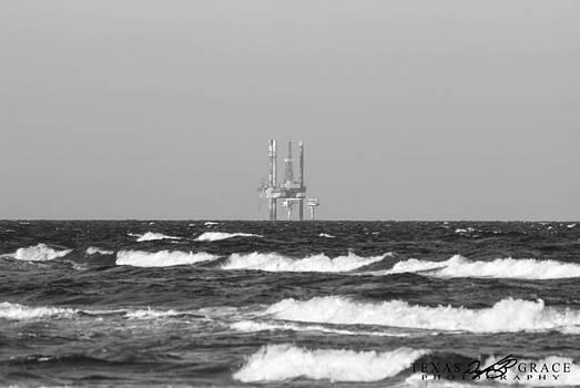Beachouse View by Douglas Burrell