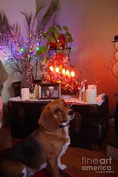 Tannis  Baldwin - Beagle Christmas