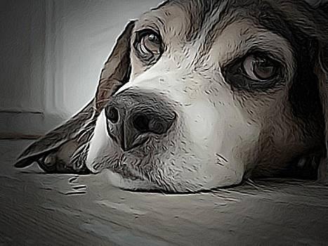 Beagle Love by Lisa Martin