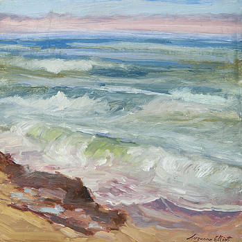 Bean Hollow Beach California by Suzanne Elliott