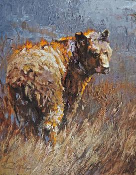 Bear Footin by Mia DeLode