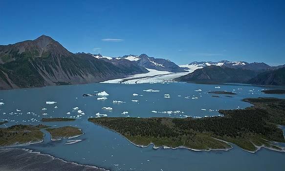 Bear Glacier Seward Alaska by Michael Rogers