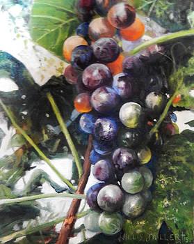 Bear Much Fruit by Willis Miller