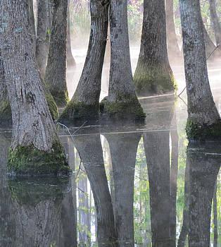 Bear Swamp by Kent Dunning