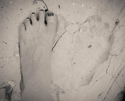 Bear Track My Foot by Christy Usilton