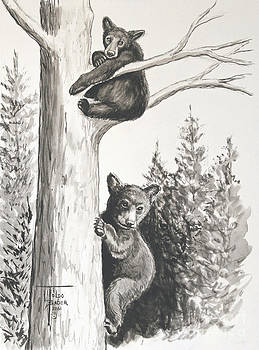 Art By - Ti   Tolpo Bader - Bears in a Tree