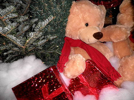 Kate Gallagher - Beary Merry Christmas