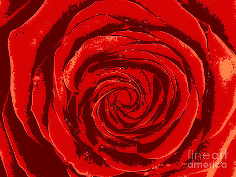 Beautiful Abstract Red Rose Illustration by Oleksiy Maksymenko