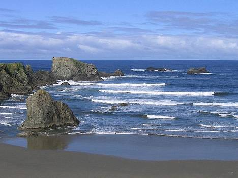 Beautiful Bandon Beach by Will Borden