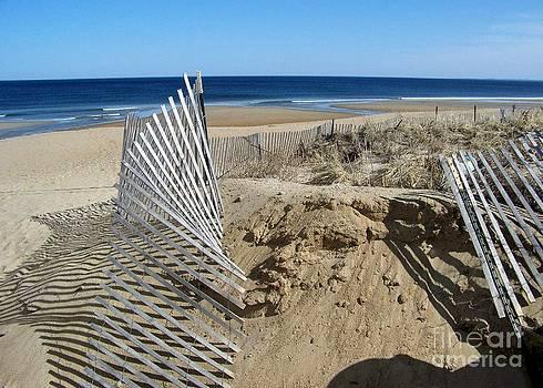 Beautiful Beach Day by Eunice Miller