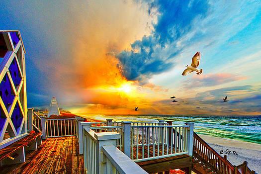 Beautiful Beach Seaside Florida Beach Staircase by Eszra Tanner