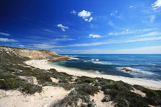 Beautiful Beach White Sand by Carl Koenig