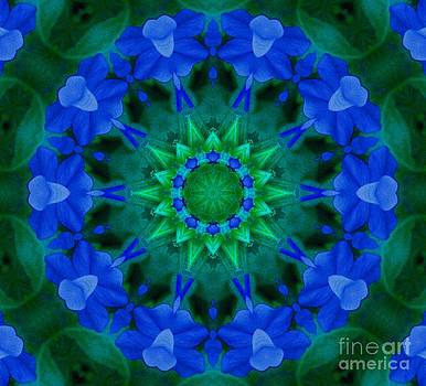 Beautiful Blue by Annette Allman