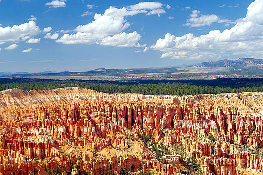 Douglas Taylor - BEAUTIFUL BRYCE CANYON