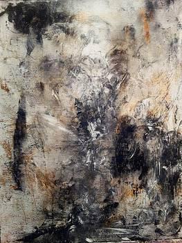 Beautiful Chaos by Shawnequa Linder