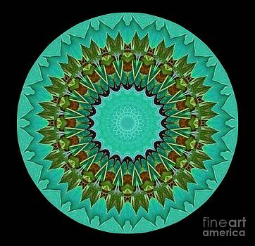 Beautiful Circle by Annette Allman