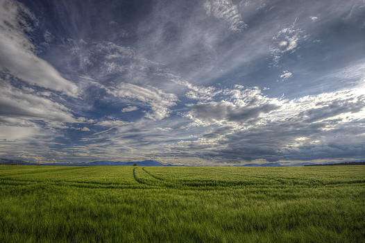 Beautiful countryside by Ivan Slosar