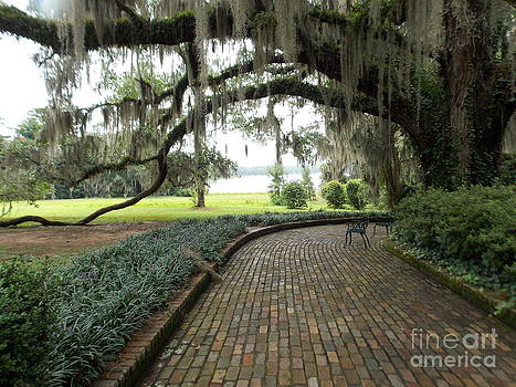 Beautiful Day at Maclay Gardens by Annette Allman