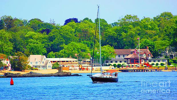 Beautiful Day for Sailing by Judy Palkimas