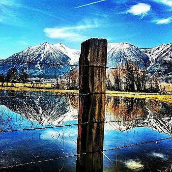 Beautiful Day In Gardnerville by David Williams