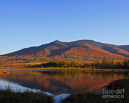 Beautiful Fall Reflection by Lloyd Alexander-Pictures for a Cause