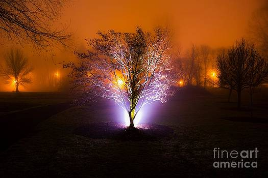 Beautiful Foggy Night 2 by Michael Cross