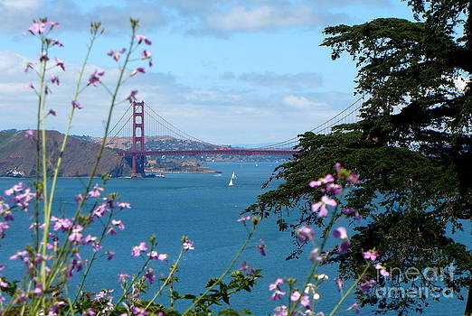 Beautiful Golden Gate by Danielle Groenen