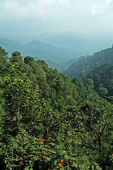 Devinder Sangha - Beautiful Hills