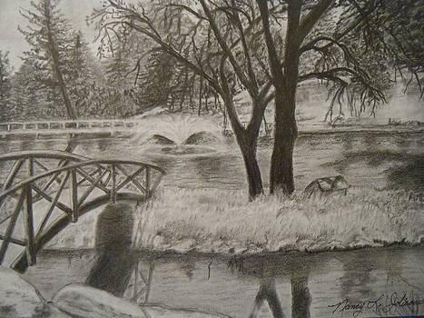 Beautiful Lake Alandale California by Nancy L Jolicoeur
