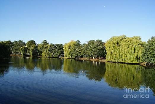 Beautiful lake by R J